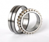 NN Series Bearing