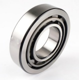 NUP Series Bearing